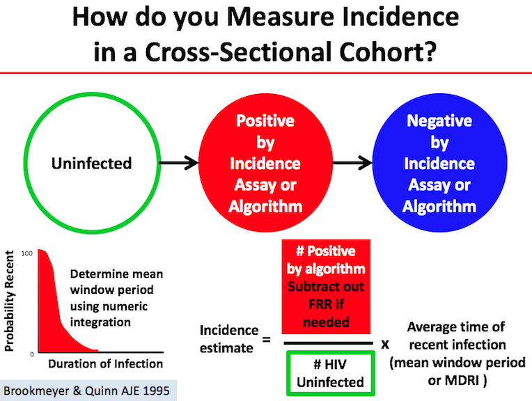 Cross-Sectional Incidence Testing | Infectious Disease Dynamics